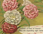 Antique Postcard Pink and White Carnations With Friendship Verse by Longfellow 1913