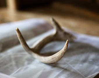 Real 3-Point Deer Antlers / Natural Rustic Urban Farmhouse Home Decor