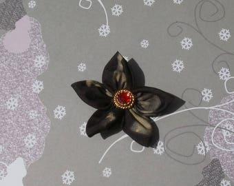 Black flower with bronze Sheen