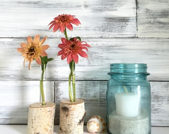 Birch wood Test tube Flower Vase, Rustic, bud vase, Set of Two, Fall Wedding decor, party favors