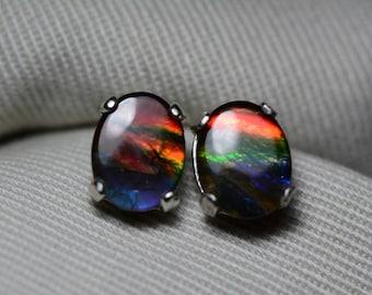 Ammolite Earrings, Ammolite Stud Earrings, Sterling Silver, 9x7mm Oval Cabochon, Alberta Canada Jewelry Jewellery, Pair #29