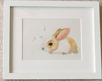 Baby rabbit with dandelion