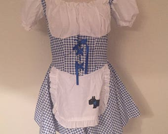 Vintage Style Dorothy Wizard of Oz Dress flash sale