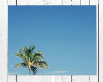 Minimalist Beach Photography | Blue Sky + Single Green Coconut Palm Tree | Minimalist Wall Art | Beach Wall Art Print | Extra Large Wall Art