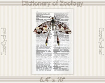 Dragonfly 4 on Vintage Upcycled Dictionary Art Print Book Art Print Insect Illustration bookworm gift book lover art dragonfly art print