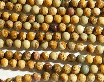 6mm Picture Jasper Round Polished Gemstone Beads, 15.25 Inch Strand (INDOC79)