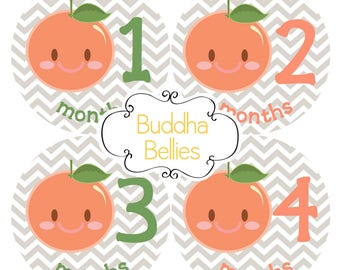 READY TO SHIP Peach Baby Girl Monthly Stickers Bodysuit Stickers Peach Nursery Gift Peach Baby Shower - Month Baby Girl Stickers Baby Decals