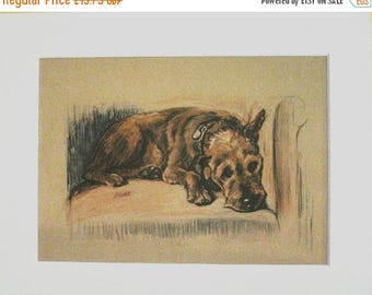 SALE IRISH TERRIER Dog 1936 Lucy Dawson Vintage signed mounted dog plate print Unique gift