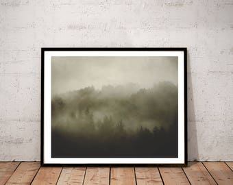 "redwood photography art print / black white sepia large wall art / nature foggy forest landscape photo print /  ""redwood morning mist"""