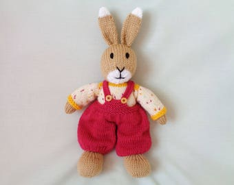 Rabbit, Hand Knitted Rabbit, William Bunny, Handmade Bunny, Toy Rabbit, Dressed Rabbit Child Gift, Easter Bunny, Easter Gift