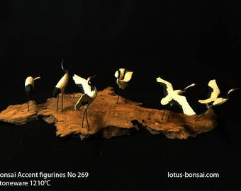 Bonsai Accent Figurines No 269,  Bird Size 8x5x3cm,  support made of Majorca Olive tree Sculpture 06/2017