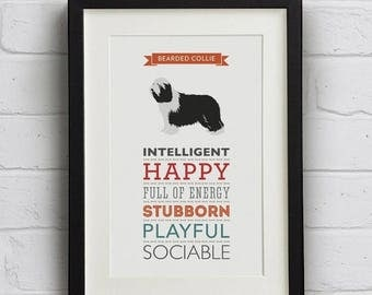 SALE 20% OFF Bearded Collie Dog Breed Traits Print - Great Gift for Bearded Collie Lovers!