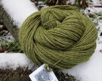 Hand dyed Yarn, 100% Lincoln Longwool, 'Fernwood'