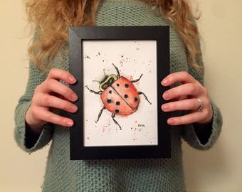 Ladybird - Watercolour and Ink