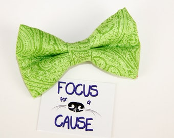 Lime Green Paisley Dog Bow Tie, Bow Tie for Pets, Bowtie, Focus for a Cause
