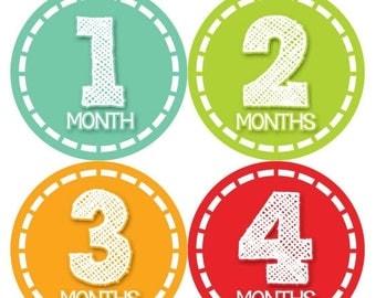 Monthly Baby Milestone Stickers Baby Boy Baby Shower Gift One-Piece Baby Stickers Monthly Baby Stickers Baby Month Sticker 375
