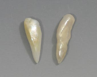 RARE Natural Fresh Water Wing Pearls From the Mississippi River