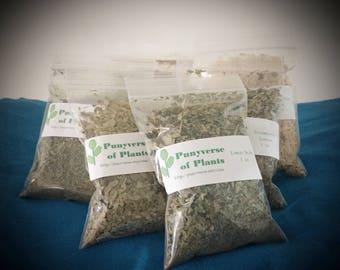 Organic Nettle Leaves - Dried Herb - 1 oz.