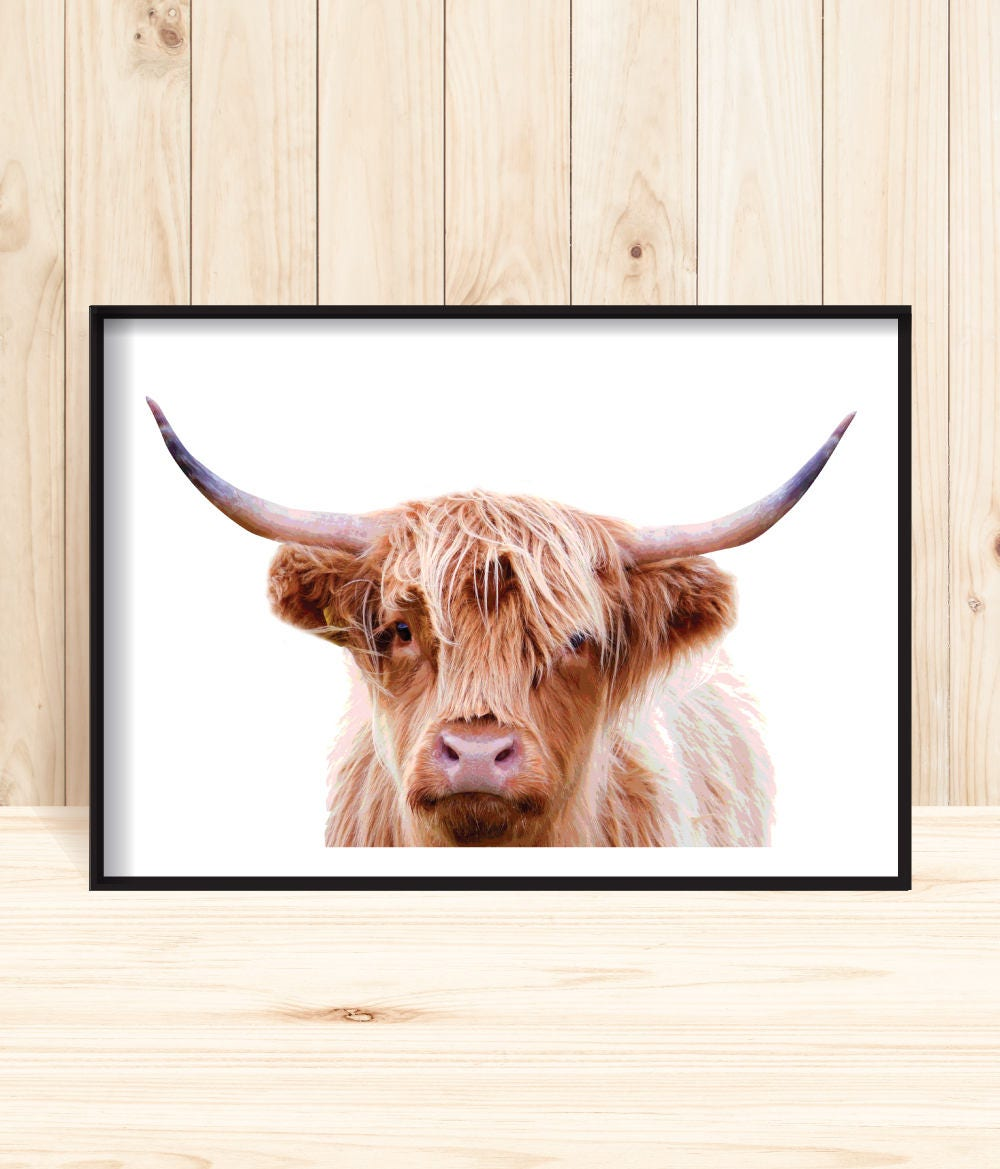 Animal Prints Large Highland Cow Print Printable Cow Poster