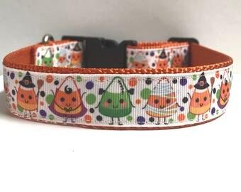 "1"" Halloween Candy Corn collar"