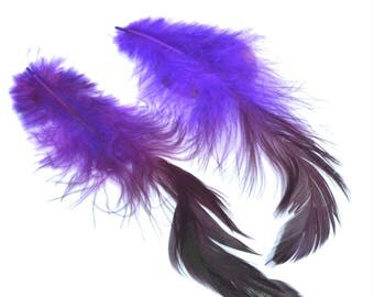 2 feathers natural purple Burgundy tail 13 / 20cm