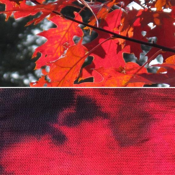 Falling Leaves Sock Blank, indie dyed merino nylon yarn in autumn colours