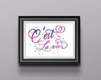c'est la vie (Custom brush pen lettered poster)