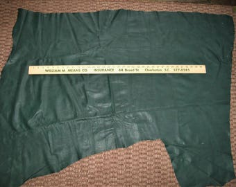green leather large scrap