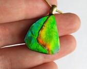 Rare Semi-Precious Ammonite/Ammolite Stone Pendent / Necklace - 21x28mm - Color change flash: Green, Yellow, Red, Blue