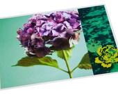 Set de table plastifié hortensia violette et graphisme jaune