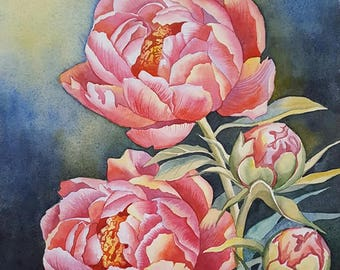 Peonies. Original watercolor painting.