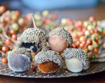Silk Velvet Acorns in Various Neutral Colors, Real Acorn Caps, Set of 5 Large, Thanksgiving, Fall Decor, Table Centerpiece, Real Acorn Caps