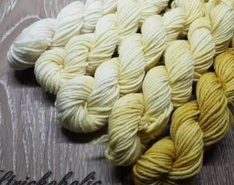 Hand dyed Merino wool mini Skeins hand Dyed