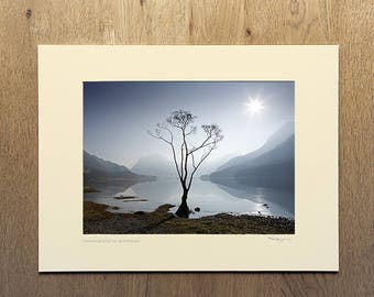 Morning Mist on Buttermere, Buttermere Tree print, Butttermere photograph, Mounted Photographic Print, mounted print, mounted photograph