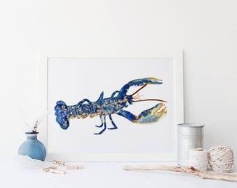 Nautical Lobster Illustration Print, Seaside Illustration, Marine Drawing, Seaside Art, Home Decor, Sea Life Drawing, Seaside Print
