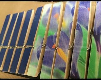 Set of 10 clothespins fantasy, standard size (Iris REF.)