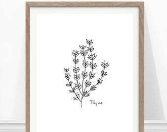 Thyme Print, Kitchen Herb Print, Hand Drawn Herb, Kitchen Wall Art, Herbs and Spices
