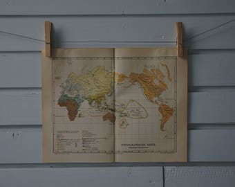 1890 Vintage Ethnographic World Map