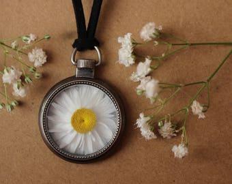 Daisy Locket Necklace, Dried Daisy Pendant, Zen, Boho