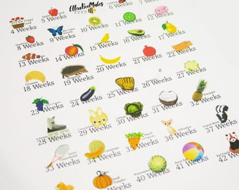 Weekly Size Pregnancy Planner Stickers