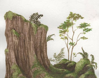 Mossy Forest with Ferns Original Drawing