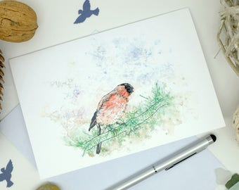 Bullfinch Card, Wild Birds, Blank Cards, Bird Lover Gift, Fathers Day Card, Nature Cards, Birthday Card, Get Well Soon Card, 6x4 Print