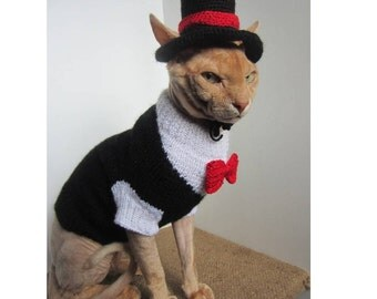 Red collar butterfly, clothes for sphynx, cat sweater dinner jacket, cat costume hat, sphynx sweater, cat wedding tuxedo, sphynx cat clothes