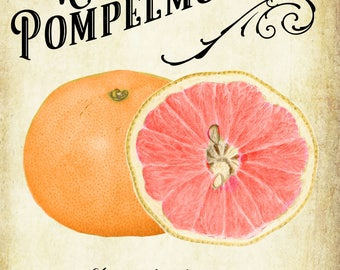 Customized Label - Pompelmocello Liqueur - Grapefruit Label - Vintage Style - Homemade Liqueur Label - Customizable Weatherproof Label