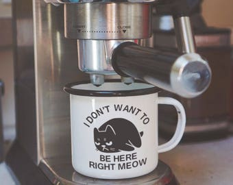Funny Cat Mug | Cat Lovers Gift | Don't Want to Be Here Right Meow