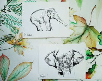 Elephant illustrations. Two numbered prints of Asian elephants. Gift for animal lover, elephant lover, paper anniversary or a husband gift