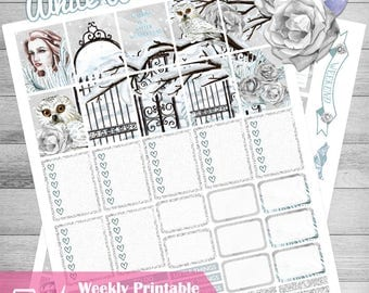 Printable Planner Stickers, use with Erin Condren, Winter Stickers, White, Owl, Florals, ECLP, Blue, Frost, Rose, Planner kit, cutfiles