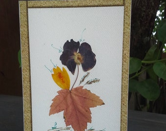Greeting cards cards-handmade/unique/made dried flowers / cards for birthday/day card for mothers/congratulations/Nature-C-FM-HTF