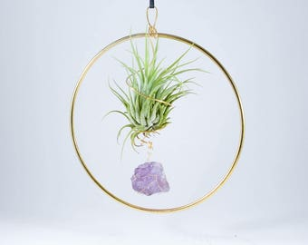 Hanging Crystal Air Plant Holder | Amethyst Crystal Decor |  Quartz Crystal | Air Plant Gift | Crystal Air Planter | Crystal Healing | Boho