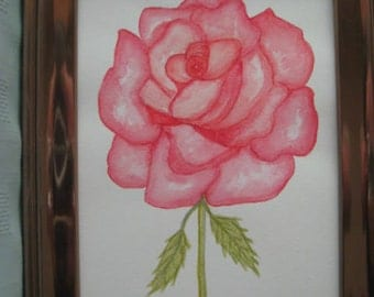 Watercolour of a deep pink rose.